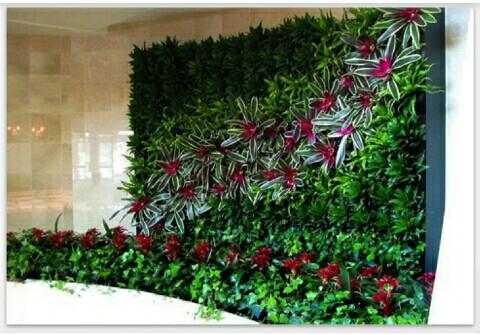 tukang taman vertical garden-