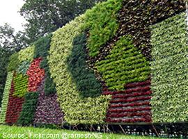 jenis jenis taman vertical garden