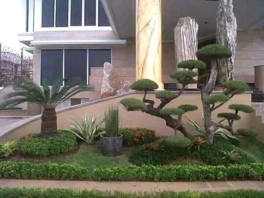 jasa pembuatan taman murah di bintaro