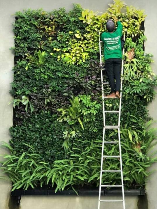 jasa pembuatan vertical garden di bsd